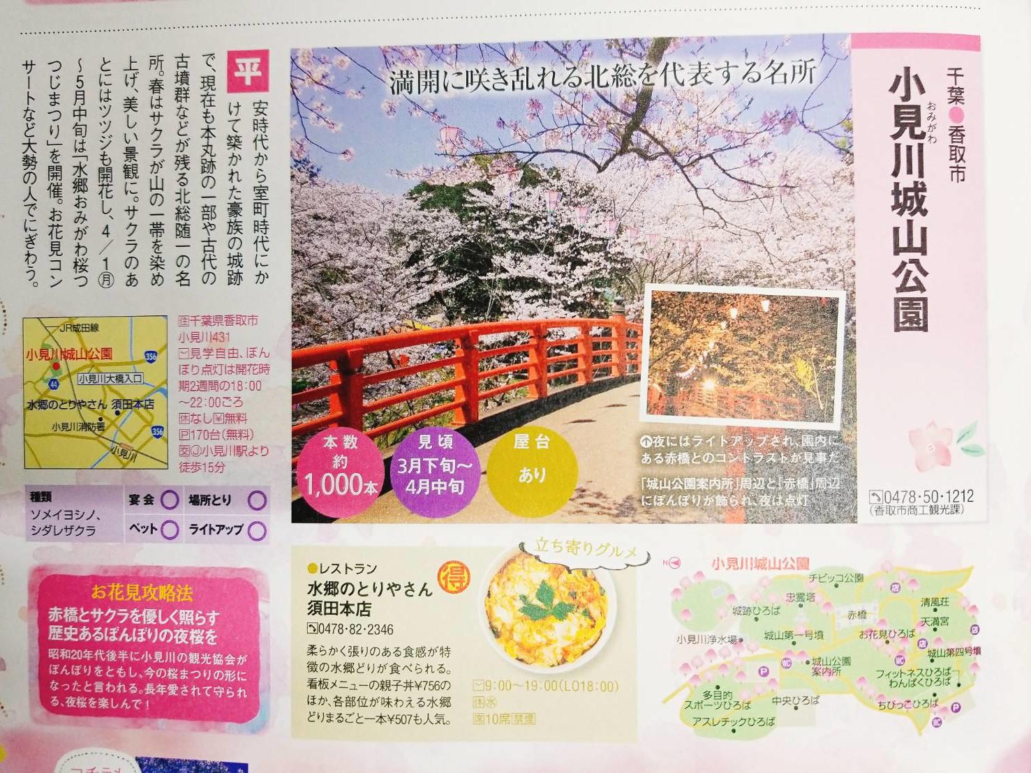 春walker特集ページ