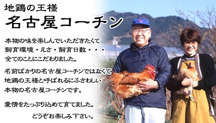 名古屋コーチンの生産者