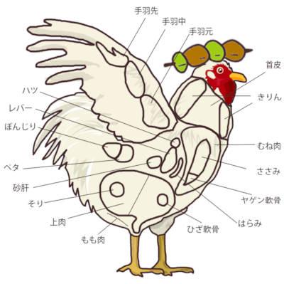 鶏肉の部位 まとめ